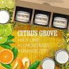Scented-Candles-Citrus-Grove-Set-of-3-Key-Lime-Lemongrass-and-Orange-Zest-3-x-4-Ounce-Soy-Candles-B00VY3SZ5E-6