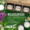 Scented-Candles-Wildflowers-Set-of-3-Lily-of-the-Valley-Lilac-and-Plumeria-3-x-4-Ounce-Soy-Candles-B00VY3T04E-6